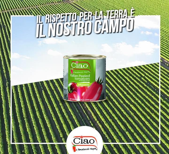 Ciao il pomodoro di Napoli - Organic
